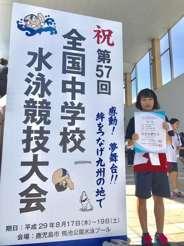 中学校 水泳 競技 大会 全国